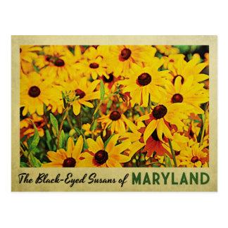 Cartão Postal Maryland Susans de olhos pretos