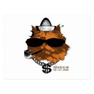 Cartão Postal Material em meu gato - kewl 2