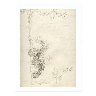 Cartão Postal Matilda o pássaro de paraíso glorioso