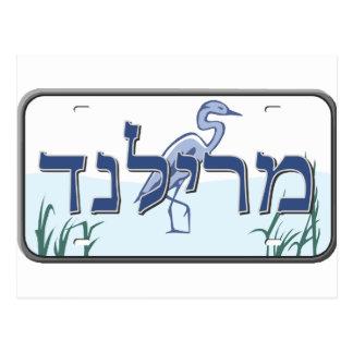 Cartão Postal Matrícula de Maryland no hebraico