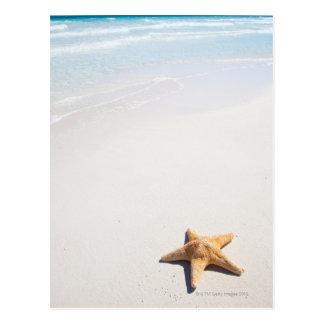 Cartão Postal Maya de Riviera