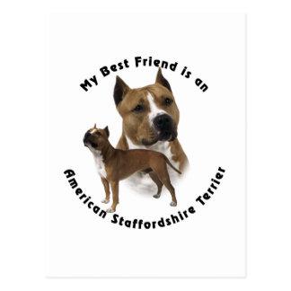 Cartão Postal Melhor amigo Staffordshire Terrier americano