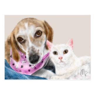 Cartão Postal Melhores amigos do cão e gato