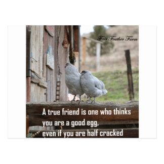 Cartão Postal meme do amigo