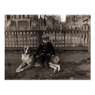 Cartão Postal menino dos 1890's que senta-se na fotografia do