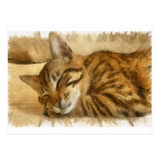 Cartão Postal Mentira deixada dos gatos do sono
