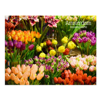 Cartão Postal Mercado da flor de Amsterdão
