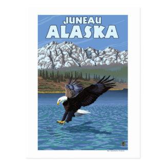 Cartão Postal Mergulho da águia americana - Juneau, Alaska
