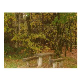 Cartão Postal Mesa nas madeiras