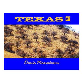Cartão Postal Mesquite de Texas