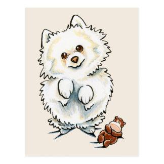 Cartão Postal Metida de pata de Pomeranian