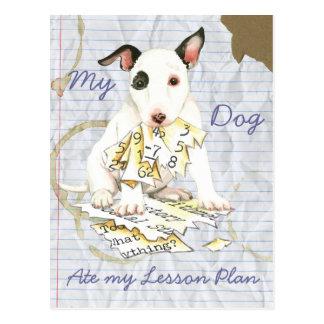 Cartão Postal Meu bull terrier diminuto comeu meu plano de aula