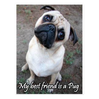 Cartão Postal Meu melhor amigo é um Pug