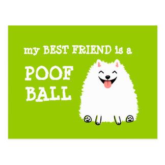 Cartão Postal Meu melhor amigo é uma bola do Poof - Pomeranian