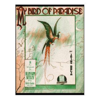 Cartão Postal Meu pássaro do cobrir da folha de música do