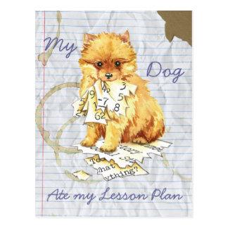 Cartão Postal Meu Pomeranian comeu meu plano de aula