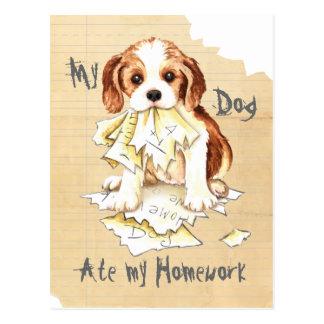 Cartão Postal Meus Cavalier comeram meus trabalhos de casa