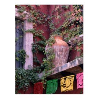 Cartão Postal México, San Miguel de Allende, hera, pote de