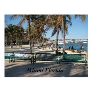 Cartão Postal Miami Florida