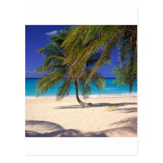 Cartão Postal Milha tropical Grande Caimão da ilha sete