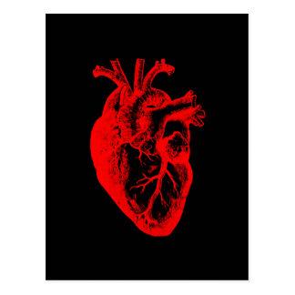 Cartão Postal Mim anatomia do coração do coração amam/I