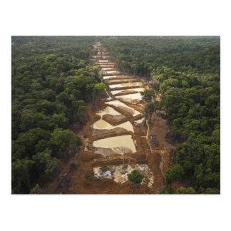 Cartão Postal Mineração aluvial do ouro. Floresta húmida,