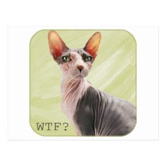 """Cartão Postal Ming diz """"WTF? """""""
