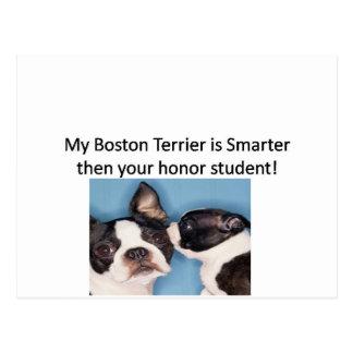 Cartão Postal Minha Boston Terrier é mais esperta então seu