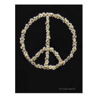 Cartão Postal Mini margaridas em um símbolo de paz