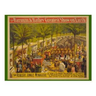 Cartão Postal Mistura variada da selva no poster do circo da