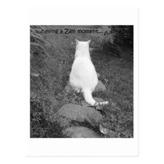 Cartão Postal Momento do zen