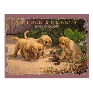 Cartão Postal Momentos-Três DOURADOS uma multidão