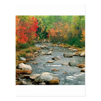 Cartão Postal Montanhas brancas New Hampshire do outono
