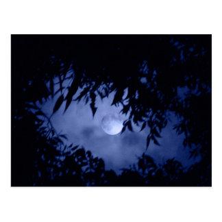 Cartão Postal Moonglow