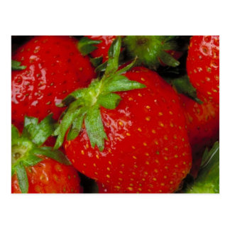 Cartão Postal Morangos doces do verão