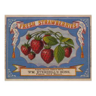 Cartão Postal Morangos frescas