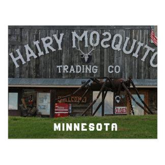 Cartão Postal Mosquito peludo