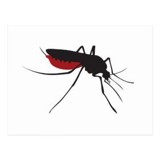 Cartão Postal Mosquito sangrento