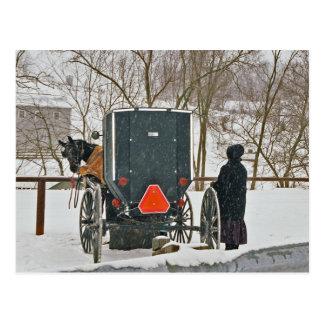 Cartão Postal Mulher de Amish com cavalo e Carrinho-Cartão