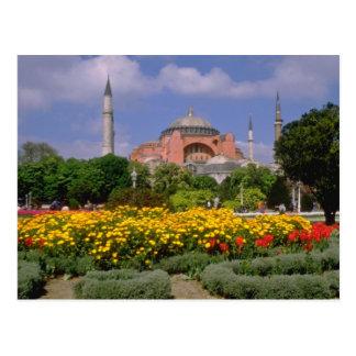 Cartão Postal Museu vermelho de Hagia Sophia, flores de Turquia