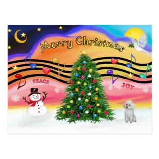 Cartão Postal Música 2 do Natal - caniche (brinquedo branco)