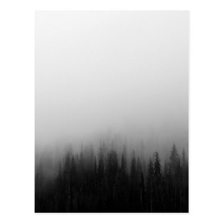 Cartão Postal Mystical nevoento da cena da paisagem da natureza