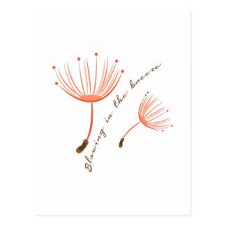 Cartão Postal Na brisa