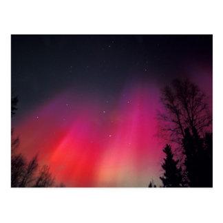 Cartão Postal NA, EUA, Alaska, Fairbanks, cortinas do rosa e