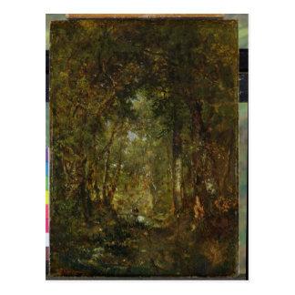 Cartão Postal Na madeira em Fontainebleau