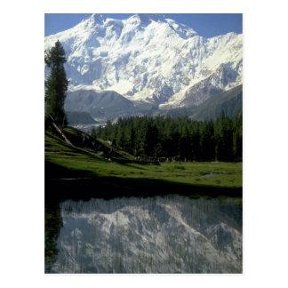 Cartão Postal Nanga Parbat em prados feericamente, Paquistão do