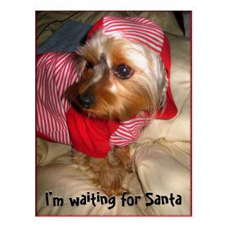 Cartão Postal Não pode dormir pouco Yorkie na Noite de Natal