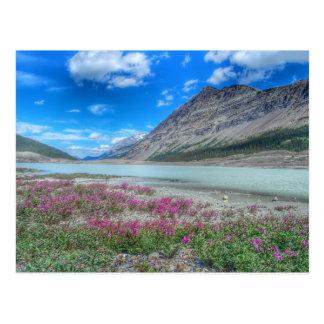 Cartão Postal Nas montanhas rochosas de banff