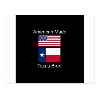 """Cartão Postal """"Nascer americano. Texas produziu"""" bandeiras e"""