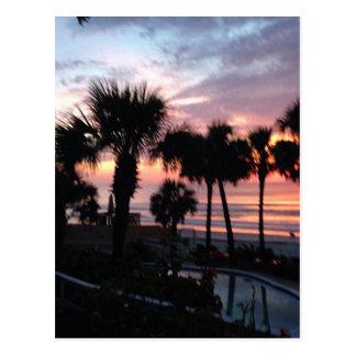 Cartão Postal Nascer do sol através das palmeiras